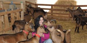 DALIX STEPHANIE  LES BIQUETTES DE BRAULEN  produits à base de lait de chèvre  lieu dit braulen haut lieu dit braulen haut