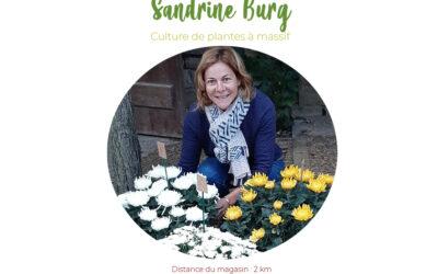 BURG Horticulture